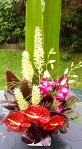 Tropical Ceramic