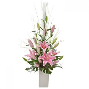 Oriental Delight(pink)