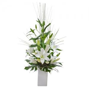 Oriental Delight(white)