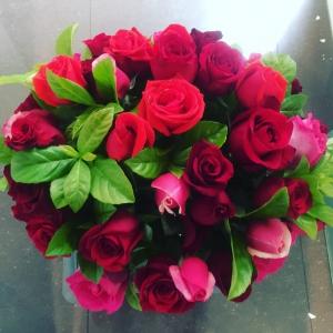 Roses Galore