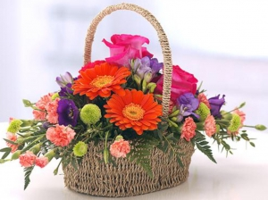 Bright Basket