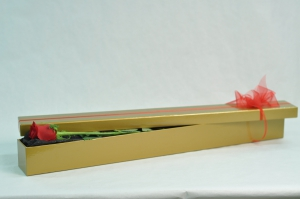 Single Red Rose Boxed