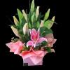 Pink Oriental Box