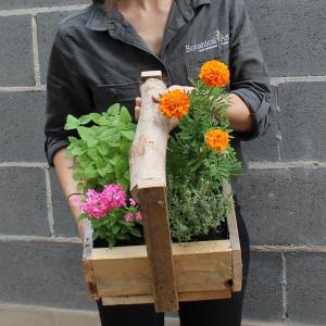 Floral & Herb Basket