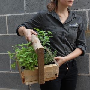 Kitchen Herb Basket