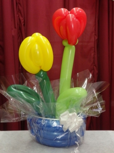 Special - Balloon Tulips