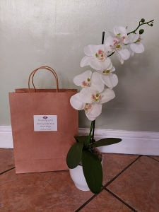 Artificial Orchid Kit