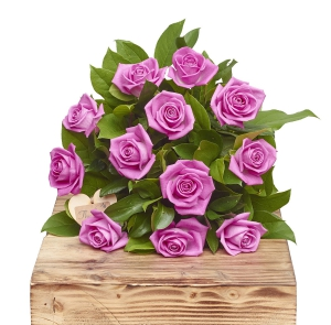 Pink Passion 12 Roses