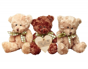 Tiny Teddy Collection