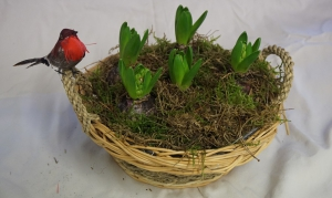 Scented Hyacinth Basket