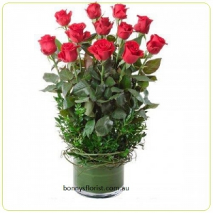 Roses By Bonny