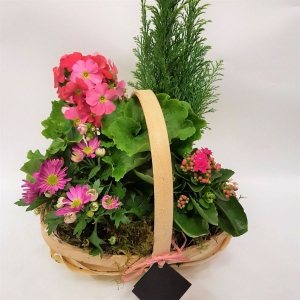 Pretty Planted Trug