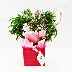 Scented Heart Vine Gift