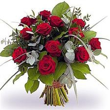 11 Elite Red Roses