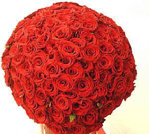 Million Red Roses
