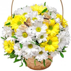 A Nice Basket.