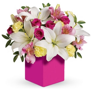 Pastel Delight Box