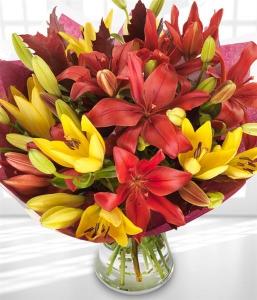 Autumn Lilies