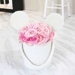 Mickey Mouse Rose Set