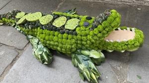 Crocodile Funeral Tribute