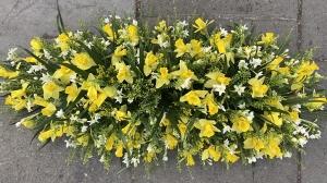 Daffodil Casket Spray