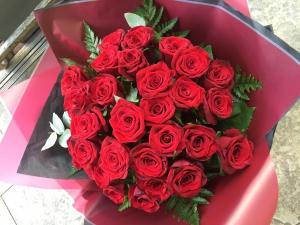 24 Velvet Roses