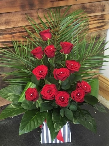12 Red Rose Tall Box