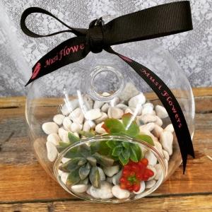 Succulent Glass Bowl