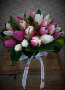 Tulips Tulips Tulips!