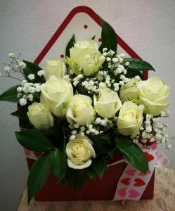 White Rose Greeting