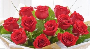 A Dozen Of Red Roses