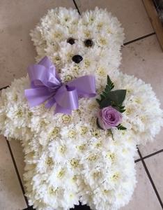 2d Teddy