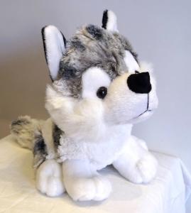 Wayne Wolf