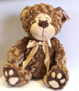 Kieren Bear