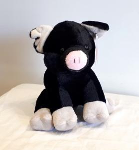 Joe Pig