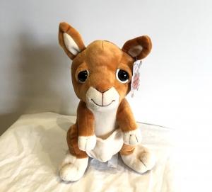 Kangaroo Gerry