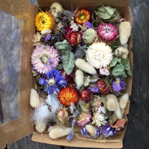 Dried Floral Boxes