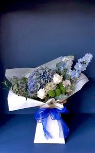 Mr Blue Sky Aqua Box