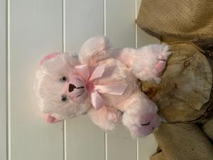Cute Pink Teddy Add-on