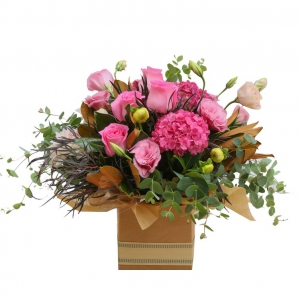 Suzy's Gift Box