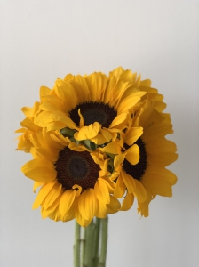 Sunflowers ( 3 Stems )