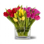 Order Luxury Tulip Collection flowers