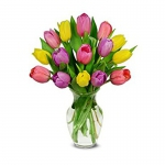 Order Timeless Tulips flowers