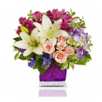 Order Pink Daisy Delight flowers