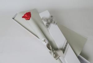 Single Red Ecuador Rose