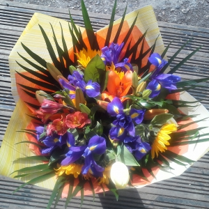 Colour Splash Hand Tied