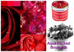 Hot Reds & Sexy Pink Aqua