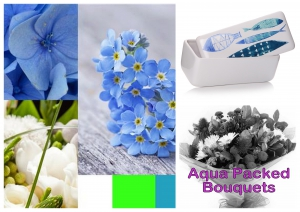 Blue & White Aqua