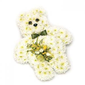 Teddy Bear With Spray