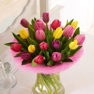 Spring Tulip Handtied